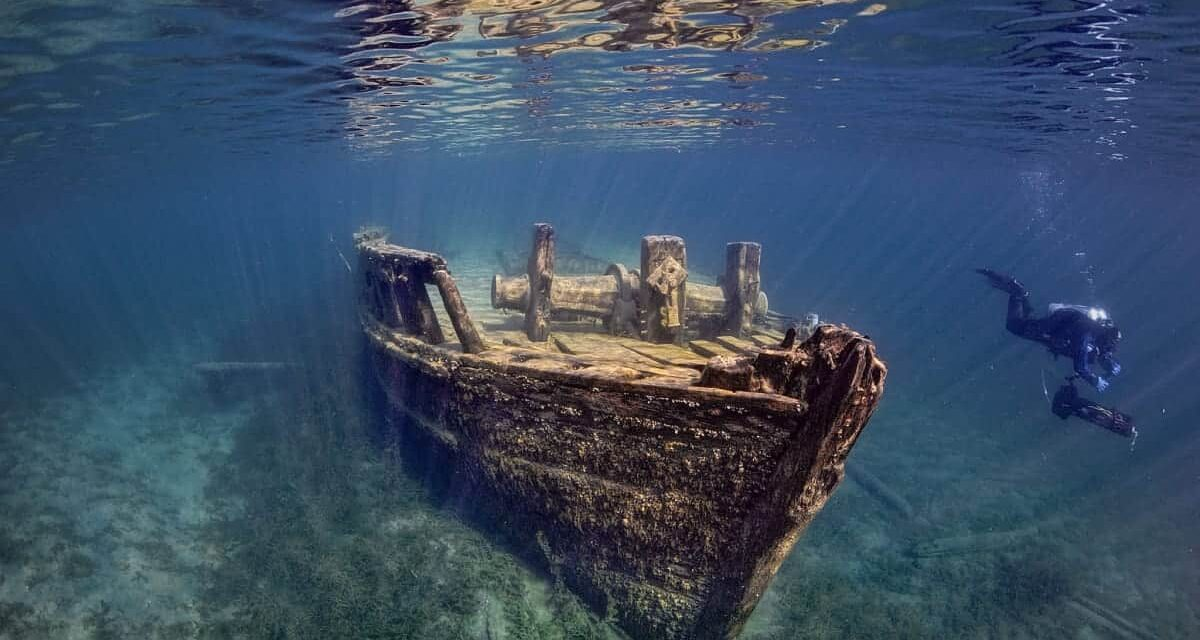 A BBC Conversation: 'Diving into the Past'