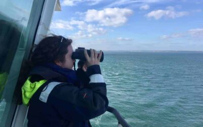 Protecting Marine Mammals Offshore with Meadhbh Quinn